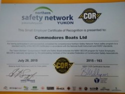 Cor Safety